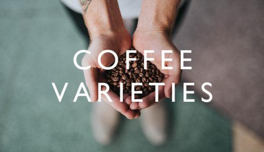 コーヒーの品種【ティピカ種、ブルボン種など / 一杯の珈琲ができるまで #2】